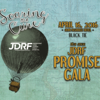JDRF Promise Gala | Soaring to a Cure