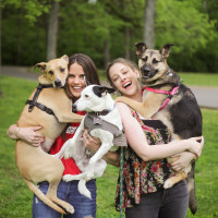 The Big Payback | Doggie Play Date