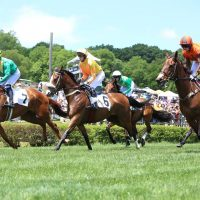 CANCELLED Iroquois Steeplechase