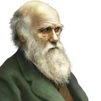 Darwin Day Party, Talk and Discussion about Evolution