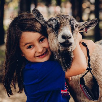 Lucky Ladd Farms | Tennessee's Largest Petting Far...