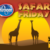 Kroger Safari Fridays in Nashville