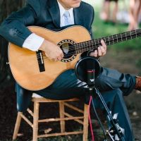 David Cohen Classical & Flamenco Guitar
