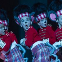 Youth Casting Call: Nashville's Nutcracker