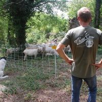 River Talks | Targeted Grazing along the Cumberland River