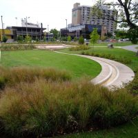 River Talks | Centennial Park: A Public Ecology