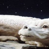 The Movie Gang Presents: The NeverEnding Story! (PG)