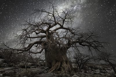 Constellation | Fifteen Fine Art Photographers