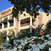 Maggiano's Little Italy (NCVC Member)
