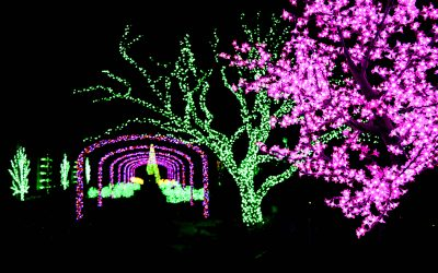 Cheekwood's Holiday LIGHTS in Nashville, TN