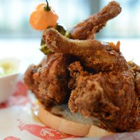 Party Fowl - Murfreesboro