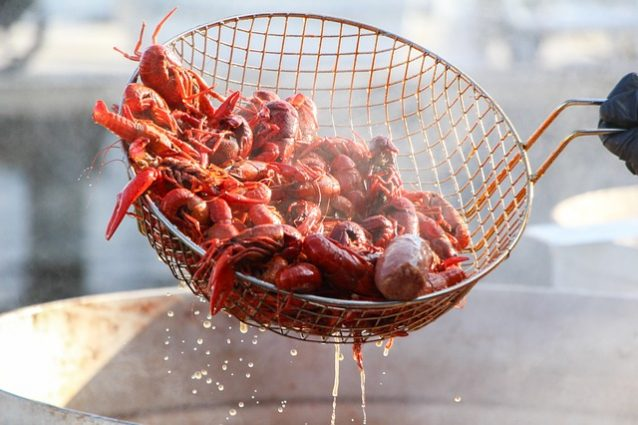Tennessee Brew Works Crawfish Boil