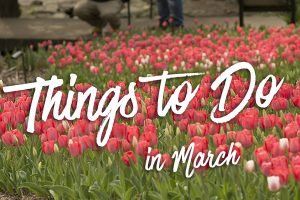 Things to Do in March - Nashville, TN