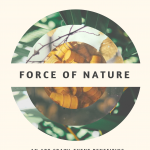 Force of Nature Fundraiser + Art Crawl