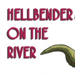 Hellbender on the River