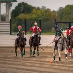 Polo Match | Tennessee vs. Kentucky State Challenge Cup