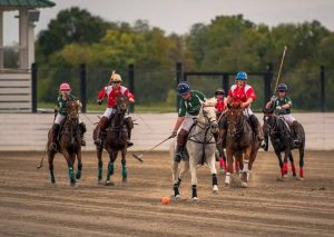 Polo Match | Tennessee vs. Kentucky State Challeng...