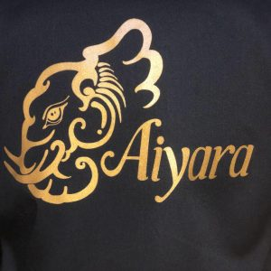 Aiyara Thai and Sushi