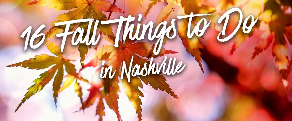 16 Things to Do this Fall