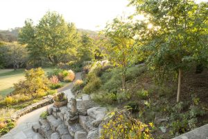 Adult Workshop: Photographing the Garden: Texture and Pattern
