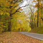 Oct. Bledsoe Creek State Park Guided Hikes