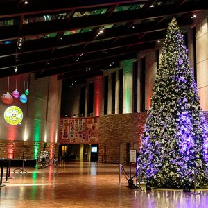 Museum Members' Holiday Reception