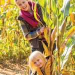Fall Family Fun Festival – Corn Maze & Pumpkin Patch