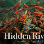 """River Talk: """"'Hidden Rivers': A Film Screening and Discussion"""