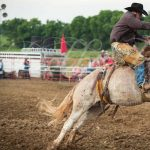 Bold Enough Rodeo Challenge