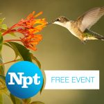 NPT's Nature: American Spring LIVE event