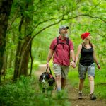 Free Bledsoe Creek State Park Hikes