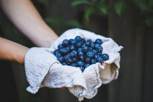 Blueberry Picking Party