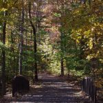 White House Greenway Hike