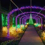 Holiday LIGHTS Member Preview