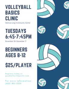 Volleyball Basics for Beginners