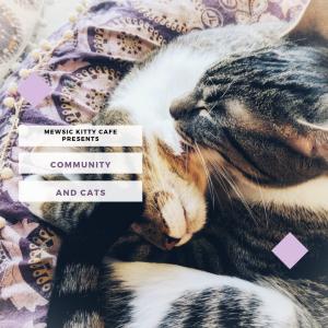 Community and Cats: Immigration 101
