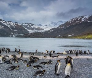 Stories and Lessons from an Antarctic Adventure