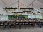 STF Events & Catering