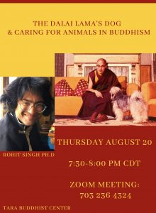 The Dalai Lama's Dog & Caring For Animals In B...