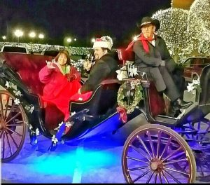 Christmas Lights Carriage Rides