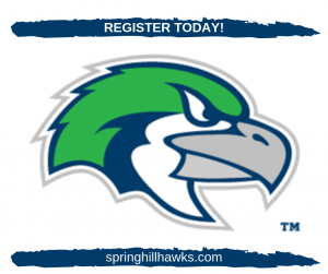 Youth Soccer & Flag Football in Spring Hill