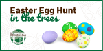 Easter Egg Hunt in the Trees