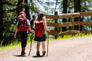 Build Your Own Hiking Stick