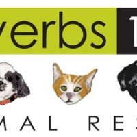 Proverbs 12:10 Animal Rescue Info Booth | The Big Payback