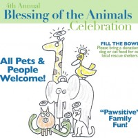 Blessing Of The Animals Celebration
